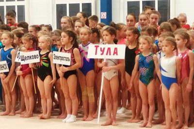 Областной турнир  по спортивной  гимнастике